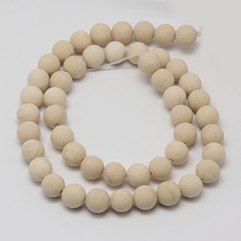 Natural Fossil Beads Strands, Frosted, Round, 10mm, Hole: 1mm; about 38pcs/strand, 14.9