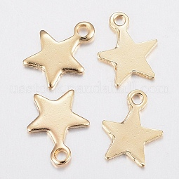 304 Stainless Steel Charms US-STAS-H436-51
